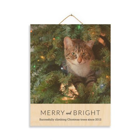 11x14 Merry and Bright - Expressions Wood Print