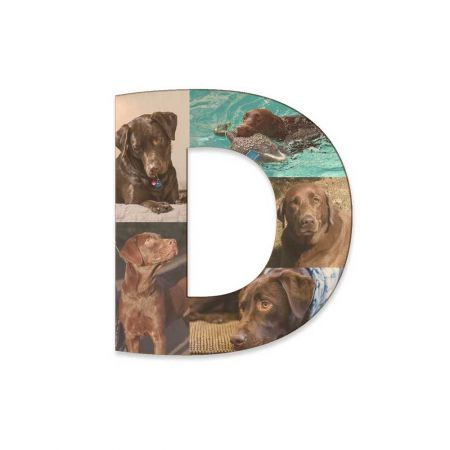 12-Inch Wood Photo Letter - D